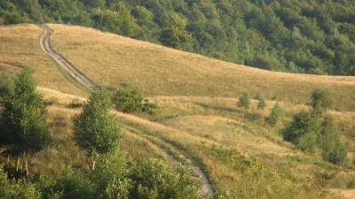 Hügel und Wälder