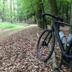 Mit dem Diverge im Wald