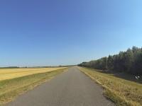 Endlose Radwege auf Deichen in Ungarn (mit 2 Storchen!).