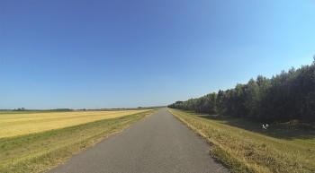 Endlose Radwege auf Deichen in Ungarn.