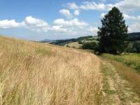 Feldweg in der Slowakei
