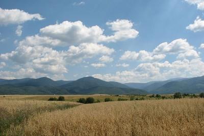 Blick aus dem Tal
